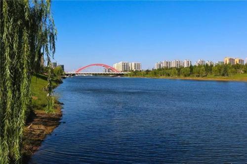 """聊城大力保护""""两河""""生态环境 打造水绿一体景观河流"""