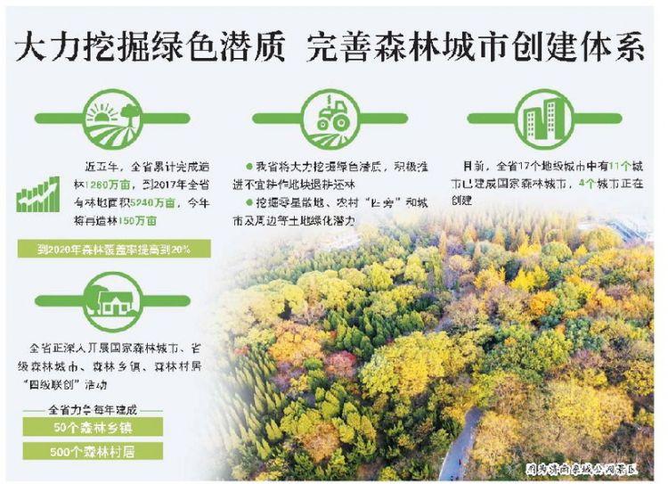 山东今年造林150万亩 2020年森林覆盖率提至20%