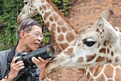 """摄影师用十年拍摄""""动物世界"""" 见动物时间比见老婆还多"""