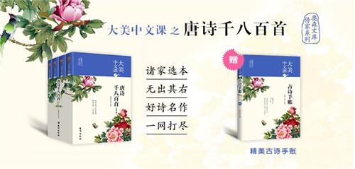 大美中文课轮转图