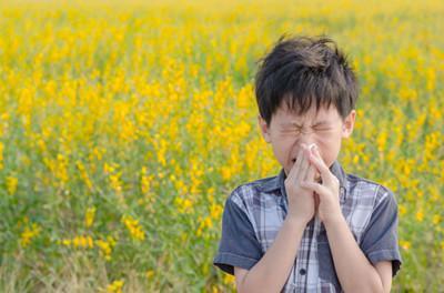 聊城疾控专家提醒:春季外出严防花粉过敏侵袭