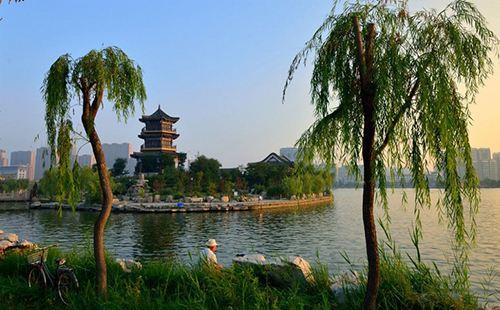 东昌湖风景区开展绿植认养活动 认养3年为一期