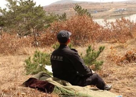 护林员丛培胜:日行两万步 护绿青山间