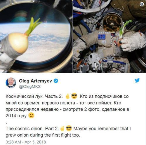 有新鲜菜吃了!俄罗斯宇航员往国际空间站带洋葱