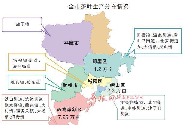 青岛已有茶园面积11.23万亩 产值8.2亿