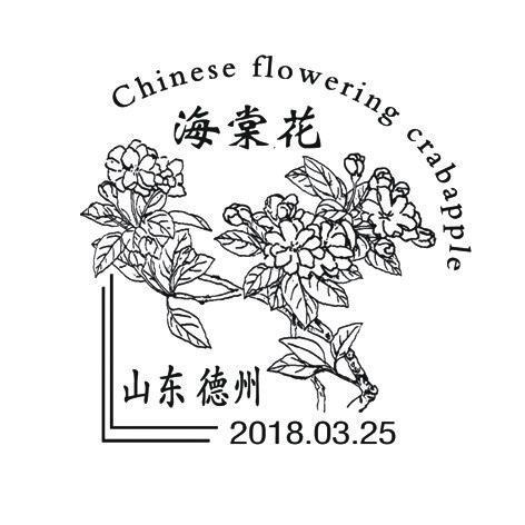 德州市推出《海棠花》纪念邮戳