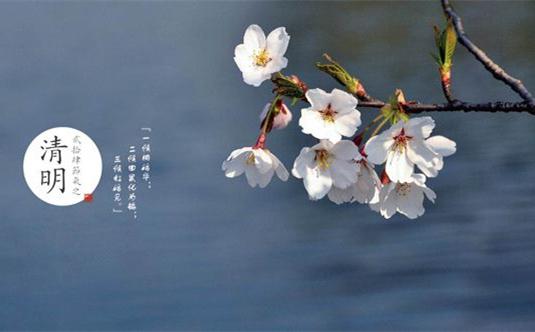 探寻春天里的诗和远方,请带上这份清明出游指南