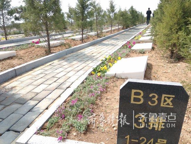 沂水殡改近一年,建成110处公益墓地,村镇村落全覆盖
