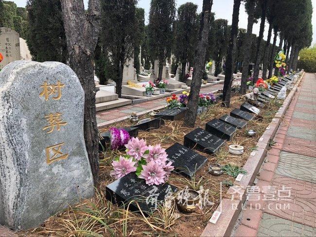 今年年底前山东每个县都要完成公益性公墓规划