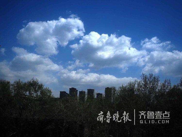 济南满天是羊群!大风刮出靓丽蓝天白云