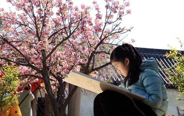 千年孟府百花盛开 小朋友绘画留住春天