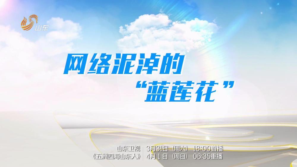 """段海新 诸葛建伟:网络泥淖的""""蓝莲花"""""""