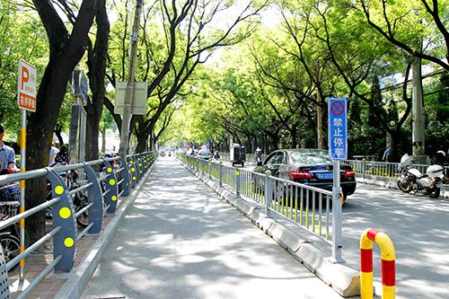 绿树成荫的街道_看图王.jpg