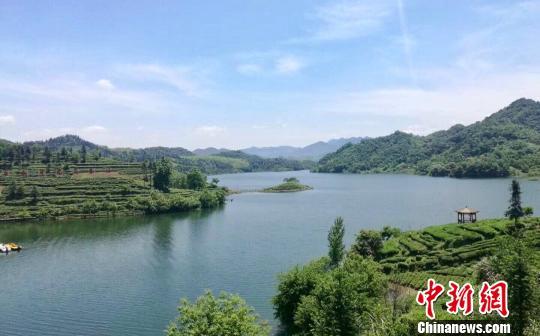 安徽六安茶文化为旅游发展添彩助力