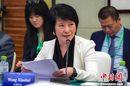 """王晓晖:""""一带一路""""建设为国际传播带来重要机遇"""