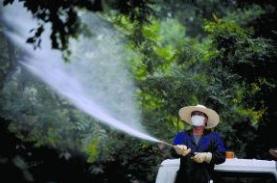 淄博园林部门喷药防虫多在凌晨 会提前通知