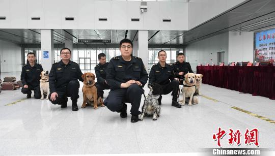山东:检疫犬化身形象大使宣传维护国门生物安全知识