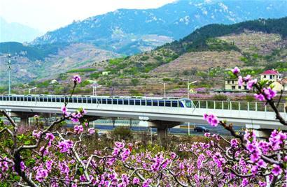 无问西东3条地铁线串起青岛观山看海赏花线路