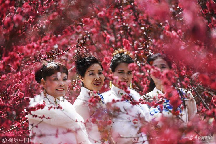 滨州:黄河旅游文化节 花海游玩享春光