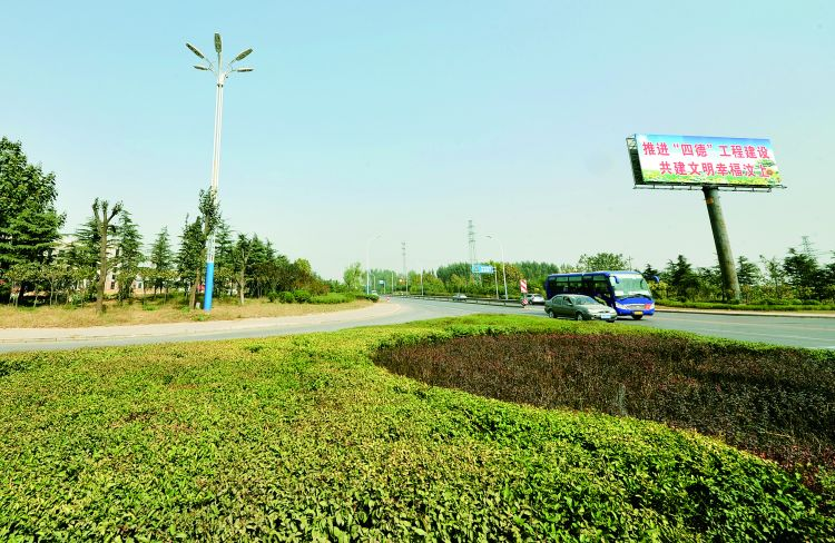 """汶上县全力推进绿化造林:让城乡共同""""拥抱""""森林"""