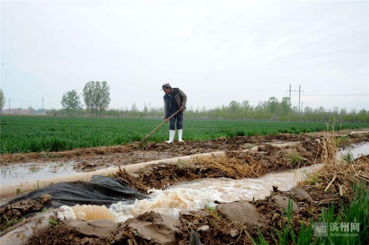滨州:引黄抗旱保春灌 已引蓄黄河水3.3亿立方