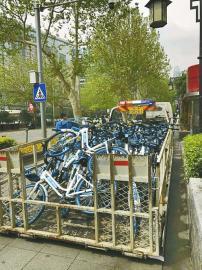 """无序摆放将被清理,共享单车""""野蛮生长期""""到头了?"""