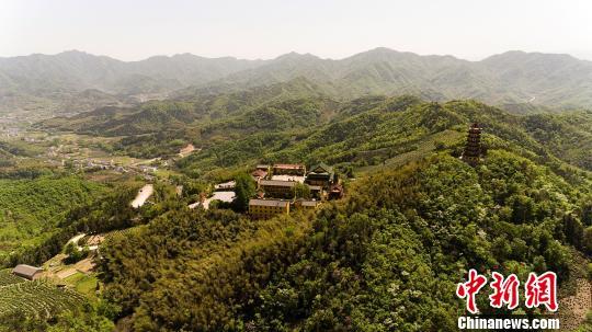 中国庐江第十届白云春毫茶文化旅游节开幕