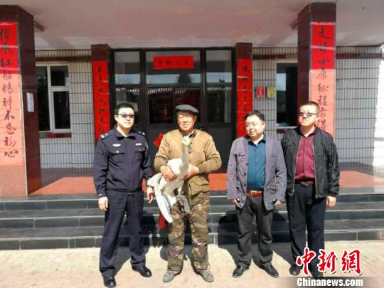 国家二级保护动物白天鹅因病被困 山西警民接力救助