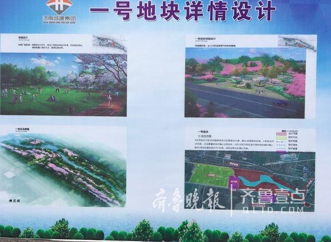 明年黄河北9000亩花海等你来 相当于12个泉城公园