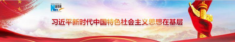 """雁阵引领,党建从""""一个红""""到""""一片红""""——透视""""两新""""党组织建设的无锡样本"""