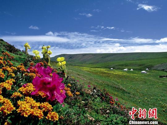 评估显示青海三江源生态建设区环境明显好转(图)