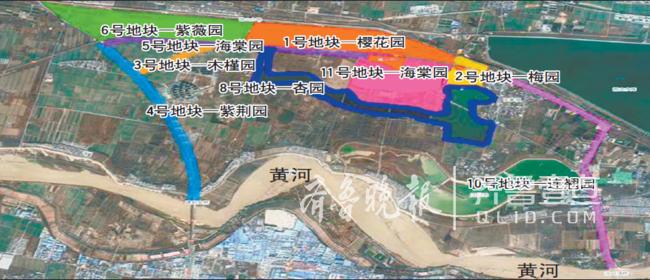 济南黄河北9000亩花海加速建设,22天栽植1750亩樱桃