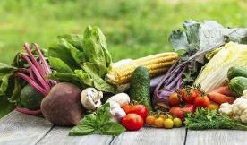 博山58批食用农产品被抽检 重点检查农残超标情况