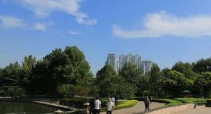 张店昌国东路绿化带里现喷泉 清水白流了5天