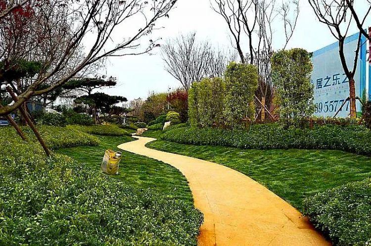 青岛要闻  城阳一中口袋公园周边邻近城阳一中,流亭小学,城阳五中等