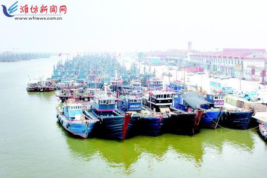 休渔期未到 寿光羊口渔港多数渔船已歇工