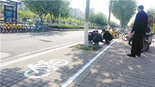 试划停放区域 淄博共享单车有序停