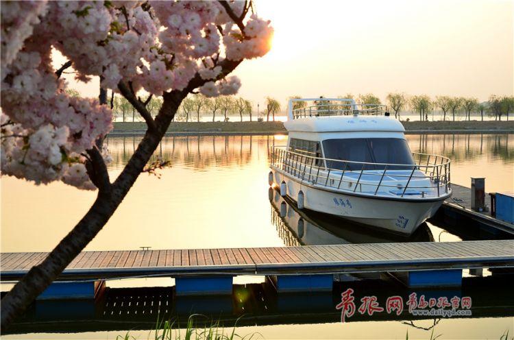 组图:大沽河腾博会体育投注度假区花红柳绿 迎来最美季节