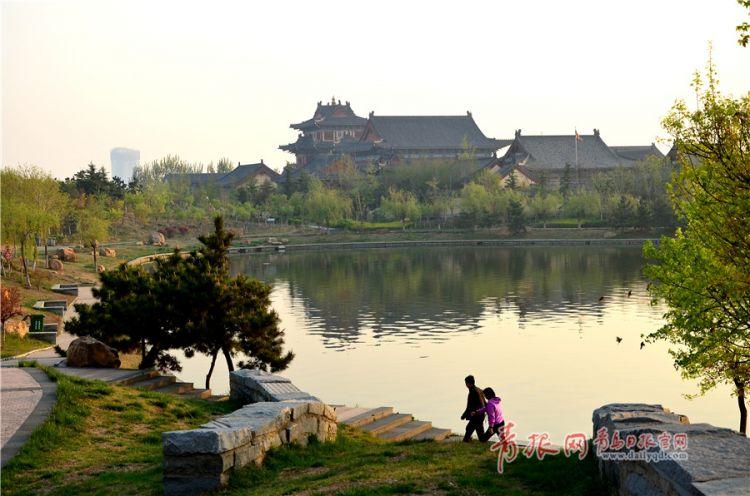 清晨的青岛大沽河旅游度假区处处花红柳绿,迎来了一年中最美的季节.