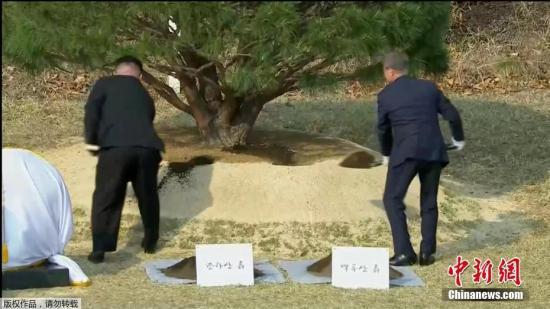 韩朝首脑发表宣言:争取在年内宣布结束战争状态