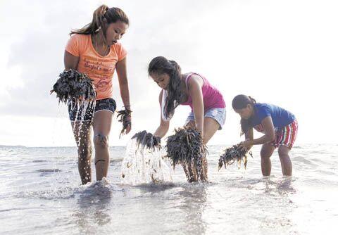 菲律宾长滩岛4月26日起闭岛,可能在4个月内重开