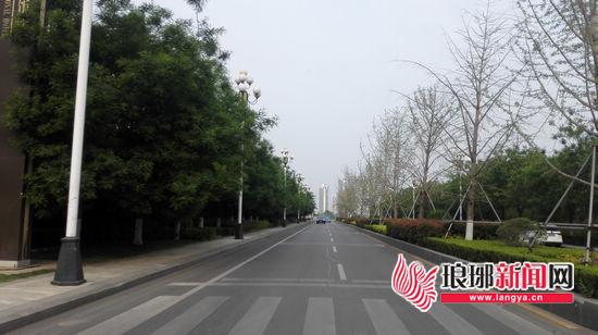 临沂北城新区兵圣路:路宽整洁 犹如漫步公园中