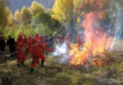 淄博2018春季森林防火期延长至6月底