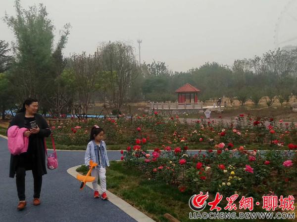 """城市的""""绿肺""""——聊城凤凰苑植物园5月1日正式开园迎客"""