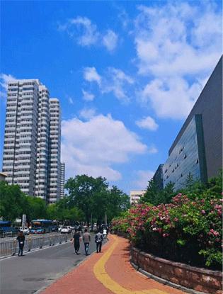 """大濟南""""天空藍""""刷爆抖音"""