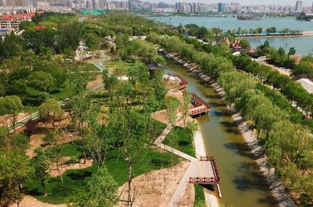 亭台水榭 绿意葱茏 聊城湖滨公园改造整体效果显现