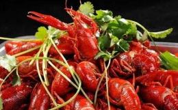 淄博市场需求量增大 小龙虾价格同比涨两成