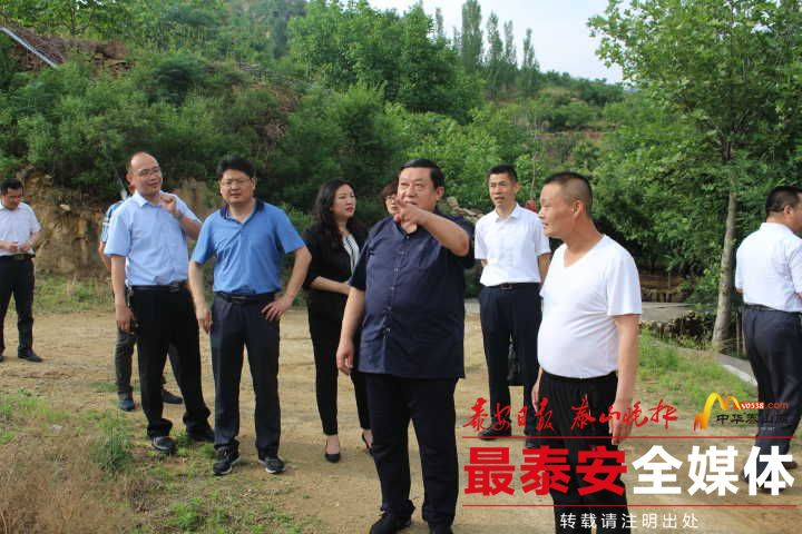 民建泰安市委开展乡村旅游专题调研