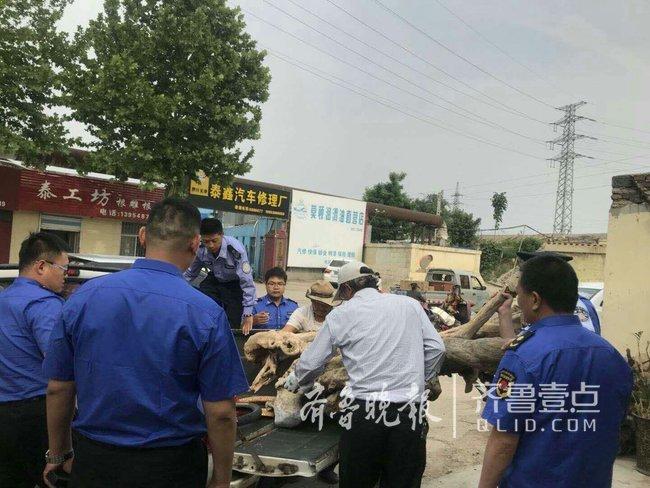 泰安岱庙辖区多部门联合集中整治 涉及800余处违规行为