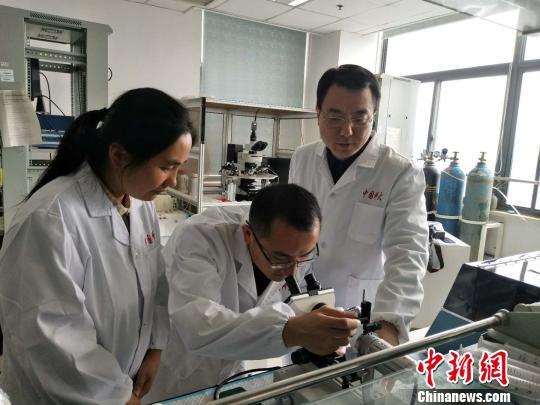 中国科大研究新发现:晒太阳可改善记忆